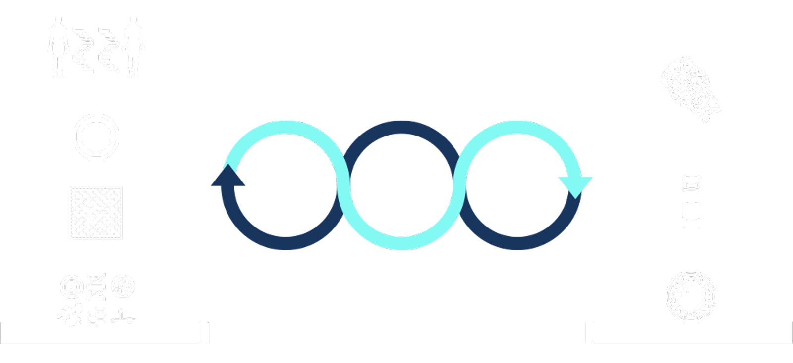 Chart For Data Input / Computational Model / Candidates